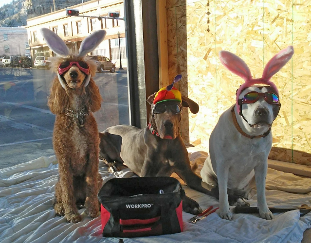 1808-Popovic-contestLucy-Linus-and-Tillie-The-Hun-at-Doggie-Stylz2-639x500.jpg