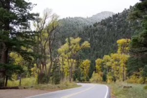 Cimarron Canyon State Park re-opens