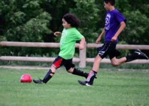 Summer soccer ends with a kick (and a picnic)